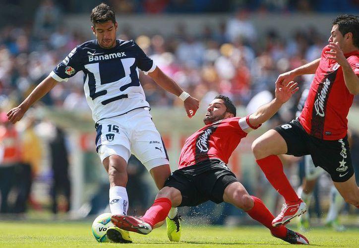 'Tuca' Ferretti le sigue el pulso a Xolos, campeón del Apertura 2012. (Notimex)