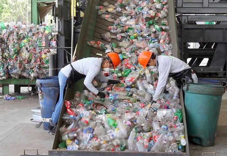 La reforma contempla además que los municipios produzcan energía a través del reciclaje. (Paola Chiomante/SIPSE)