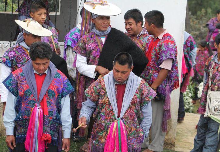 El PRI indica que enarbola las causas de las comunidades indígenas. (Archivo/Notimex)