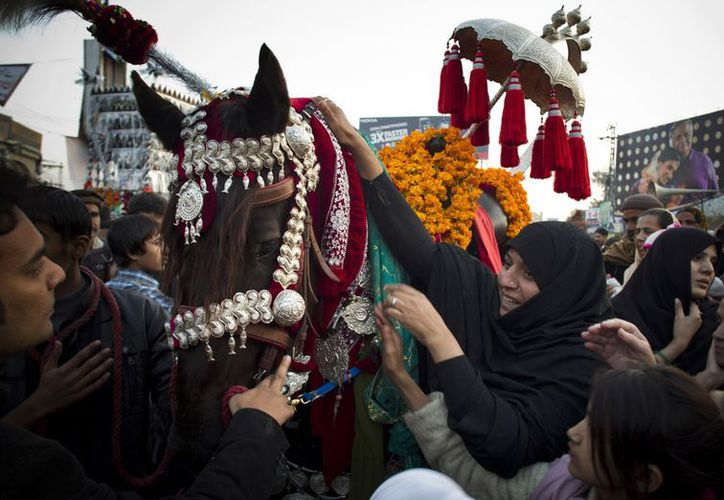 Pakistanís tocan un caballo en representación del animal que trasladó al Imán Hussein durante su batalla en Karbala. (Agencias)