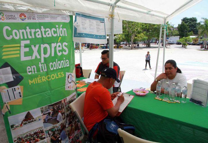 El programa se llevó a cabo en el parque de Las Palapas. (Paola Chiomante/SIPSE)