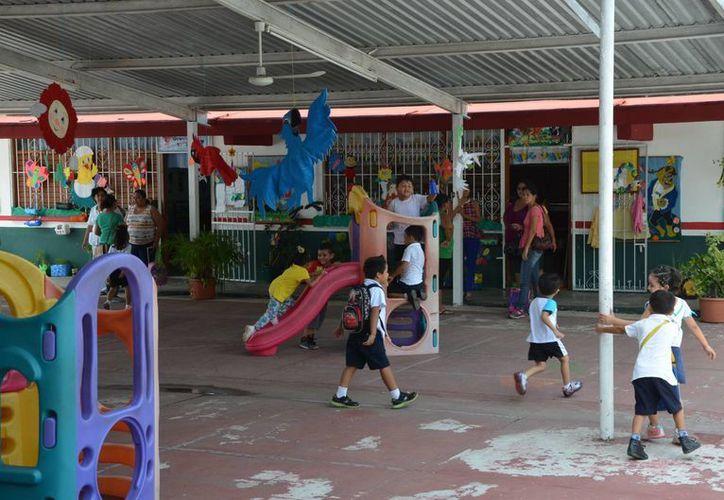 Los cursos a niños de 12 años serán programados para agosto. (Gerardo Amaro/SIPSE)