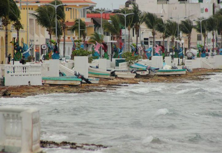 Se abrió el puerto debido a que las rechas descendieron en su intensidad de 20 a 30 kilómetros por hora. (Gustavo Villegas/SIPSE)