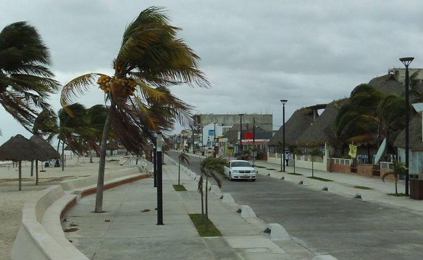 El mal tiempo cobró su primera víctima en las costas de Yucatán. (Milenio Novedades)