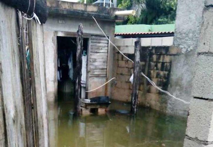 Familiares del hoy occiso trataron de convencerlo de dejar su casa porque se inunda. (Redaccoión/SIPSE)