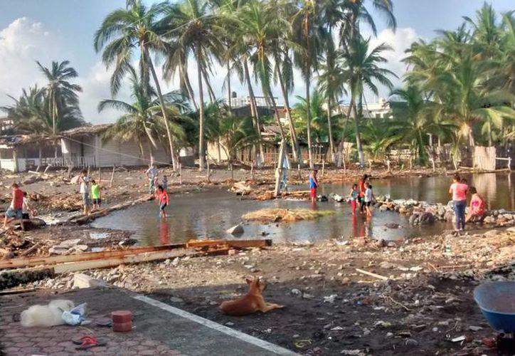 Especialista de la UNAM indica que es necesario que las organizaciones nacionales e internacionales estudien a fondo el impacto de los huracanes. (Archivo/Notimex)