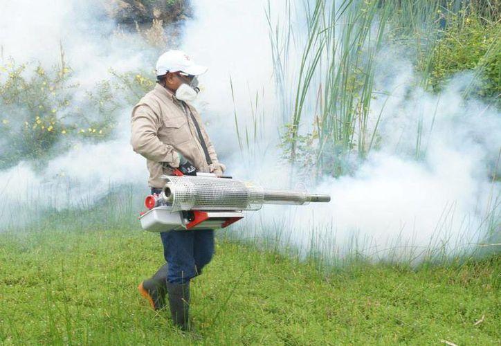 Diputados priistas de Yucatán exigieron al alcalde de Mérida, Mauricio Vila, que 'rinda cuentas' sobre las acciones que el Ayuntamiento ha realizado para frenar los contagios de dengue y chikungunya, como por ejemplo, la fumigación. La imagen es únicamente ilustrativa. (SIPSE)