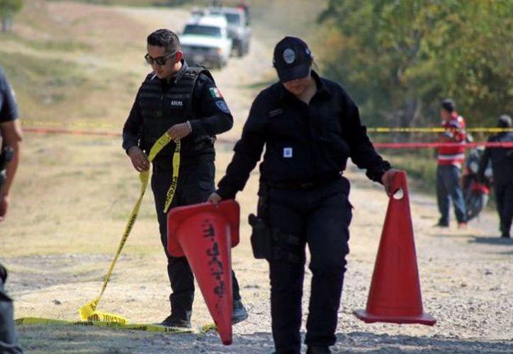 La fosa hallada estaba cerca de una carretera que va del Parque Nacional Marino Cabo Pulmo. (Cuartoscuro).