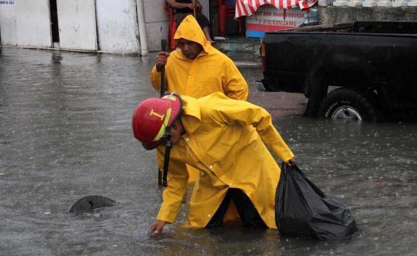 En las alcantarillas el pet y las bolsas de nylon estaban acumulados de manera alarmante e impedía que fluyera el agua. (Archivo/ SIPSE)
