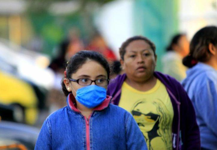 Del bochorno de hace unos días a los vientos frescos de ahora, hay mucha diferencia, lo que causa males respiratorios. (Ayala/SIPSE)