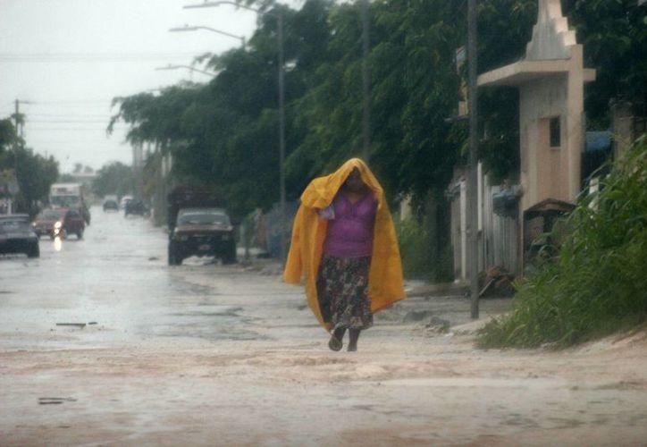Experiencias anteriores demuestran que se tuvo más de participación cuando se presentaron lluvias fuertes. (Harold Alcocer/SIPSE)