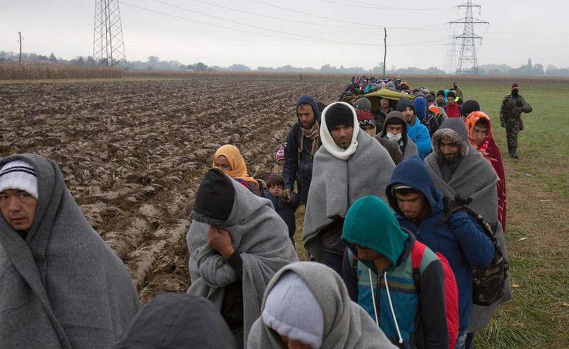 Migrantes siguen su camino a través de un campo después de cruzar desde Croacia en Rigonce, Eslovenia, este domingo. Miles de personas intentan alcanzar el norte y centro de Eruopa vía los Balcanes, pero suelen esperar días enteros entre el lodo y la lluvia en las fronteras serbias, croatas y eslovenas. (Foto AP/Darko Bandic)