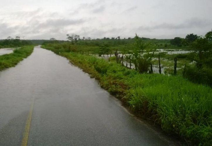 El tramo carretero de Blanca Flor, la cual interconecta a 12 poblaciones de la zona rural, sólo permite el tránsito de los vehículos altos. (Javier Ortiz/SIPSE)