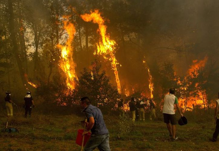 El fuego ya ha alcanzado Vigo, la ciudad más poblada de la comunidad autónoma. (La Sexta)