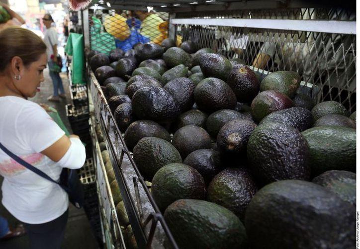 El aguacate se vente en 100 pesos en tiendas de autoservicio. (Foto: Reforma)