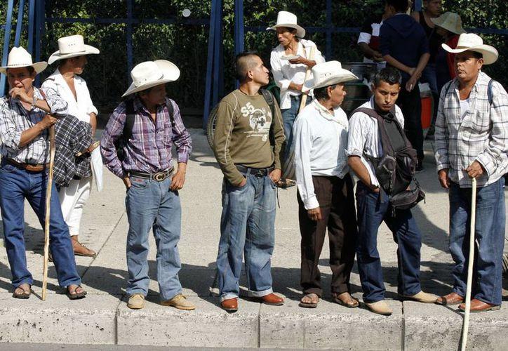 Líderes campesinos y los integrantes de la Comisión de Desarrollo Rural del Congreso del estado presentaron su propuesta para restablecer el tejido social en Michoacán. En la foto agricultores manifestándose en la Ciudad de México. (Notimex)