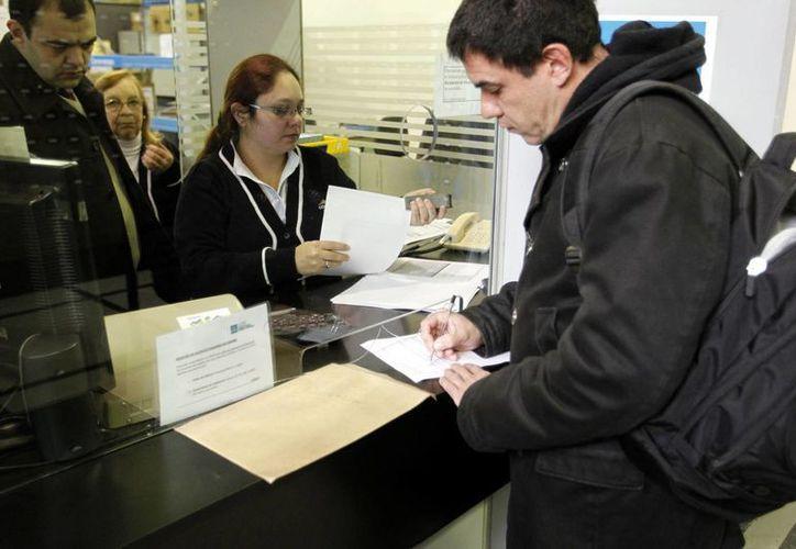 El portavoz de la Asociación de Estudios del Cannabis, Juan Vaz (d), es el primer cultivador doméstico en inscribirse en el registro de autocultivadores de marihuana, en las oficinas centrales del Correo Uruguayo. (EFE)