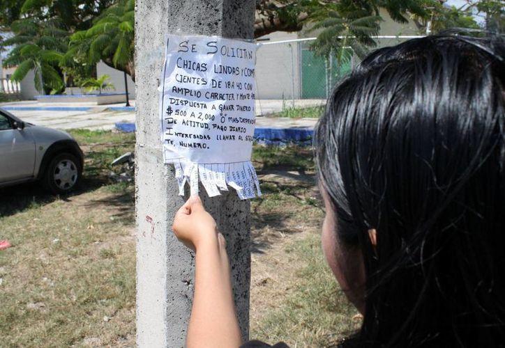 El director operativo de la Policía Municipal Preventiva, Luis Germán Sánchez Méndez, recalcó que resta identificar de forma física viviendas privadas donde se sometan a mujeres de cualquier edad, para abatir grupos criminales dedicados a ello. (Enrique Mena/SIPSE)