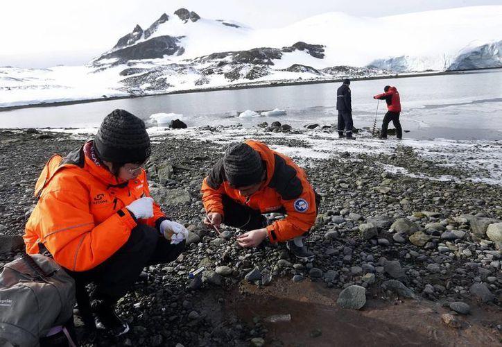Científicos trabajan en las inmediaciones de la base naval antártica Arturo Prat en la Isla del Rey Jorge (Antártica). (EFE)