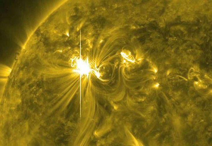 Científicos esperan que en marzo esta actividad se intensifique. (Foto: Internet)