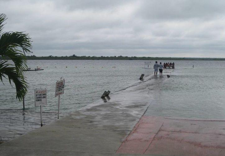 El nivel del agua ha invadido la zona del muelle y el área donde se ubican los camastros y las palapas. (Javier Ortíz/SIPSE)