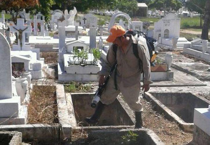 Comenzaron los trabajos de limpieza en panteones en la capital del Estado. (Ángel Castilla/SIPSE)