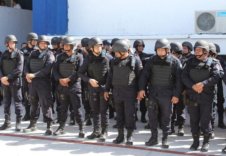 Este mes recibirán su Certificado Único Policial los primeros 200 elementos estatales de Quintana Roo. (Ángel Castilla/SIPSE)