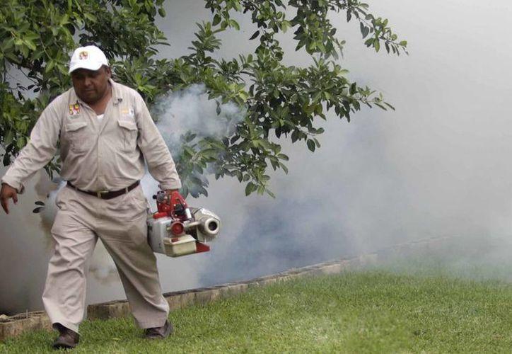 Esta semana se llevará a cabo el control larvario en diversas zonas de Cancún. (Redacción/SIPSE)