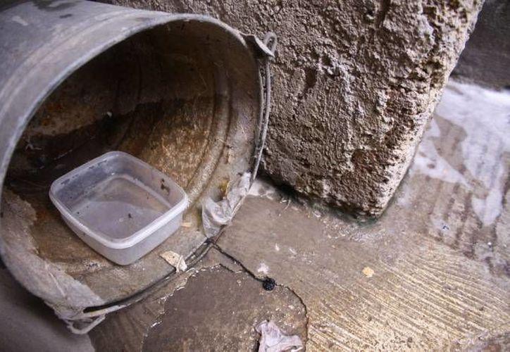 La Secretaría de Salud pide tirar los objetos inservibles que puedan acumular agua. (Archivo/SIPSE)