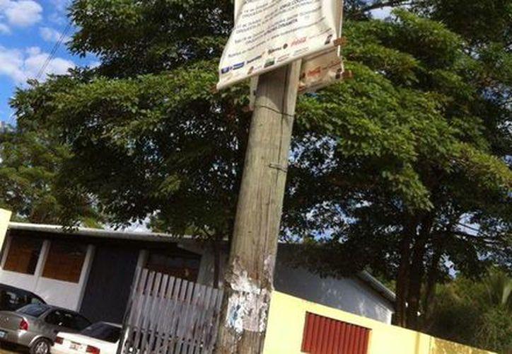 Los postes de la ciudad aun muestran la publicidad del evento, que concluyó hace un mes y que siguen sin ser retirados. (Sergio Orozco/SIPSE)