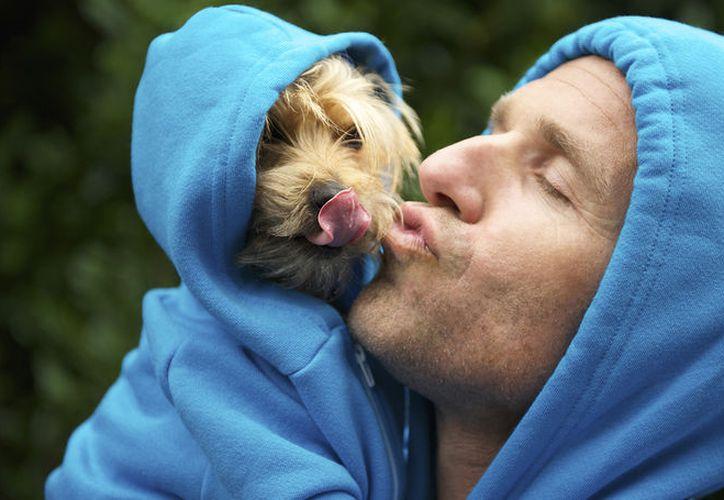Los perros y sus dueños sí se parecen debido a que la naturaleza de este animal es imitar lo que ven. (Foto: Contexto/Internet)