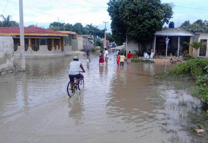 Así amanecieron este miércoles varias zonas de la costa de Yucatán; la imagen corresponde a Celestún, al poniente del estado. (José Acosta/SIPSE)