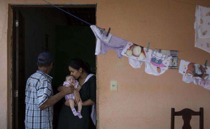 """La microcefdalia """"no tiene nada que ver con el medio ambiente, la raza o el género"""", dijo el ministro de Salud de Brasil a The Associated Press. En la imagen, Juliana da Silva sostiene a su hijita María, que nació con microcefalia, en Alcantil, Brasil, el 7 de febrero del 2016. (AP Foto/Felipe Dana)"""