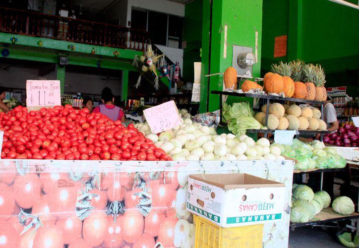 El municipio capitalino representa 16.8% de la actividad económica estatal en el tema agrícola, con valor de producción de $177 millones. (Benjamín Pat / SIPSE)