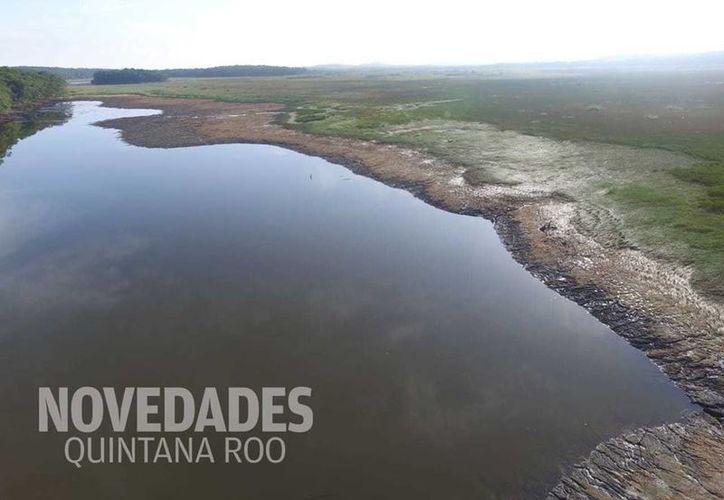 El fenómeno ocurrido en la laguna Chakanbakán podría repetirse, advierte el Centro de Investigación Científica de Yucatán. (Joel Zamora/SIPSE)