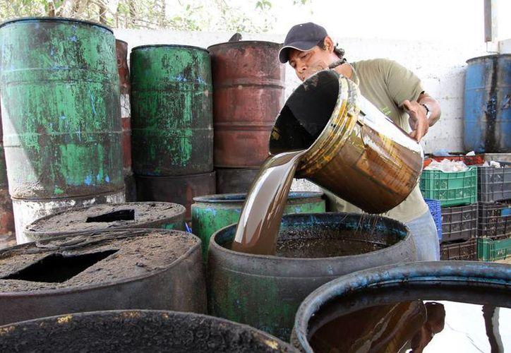 Centro de Acopio de Materiales Reciclables recolecta los aceites quemados. (Cortesía/SIPSE)