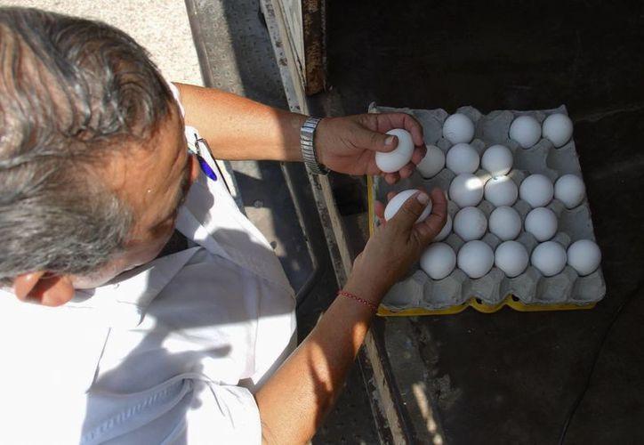 Mientras en el Norte el huevo, la leche y las tortillas subieron de precio en un 4%, en Yucatán la escalada ha sido mayor. (Milenio Novedades)