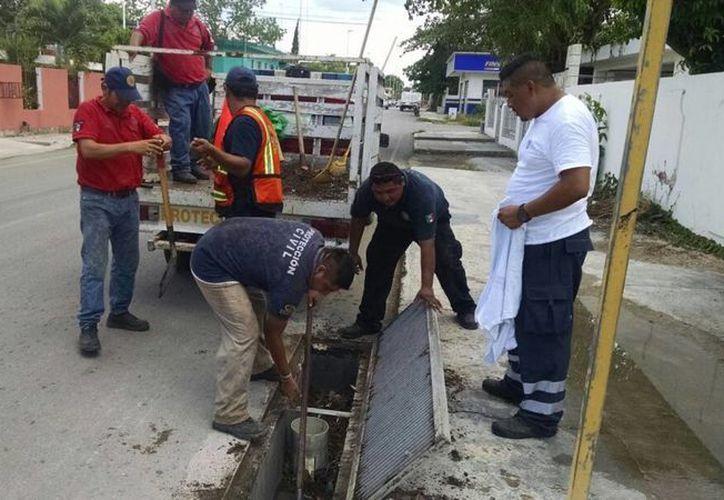 En el primer recorrido, el personal de Protección Civil levantó más de 50 kilogramos. (Benjamín Pat/SIPSE)