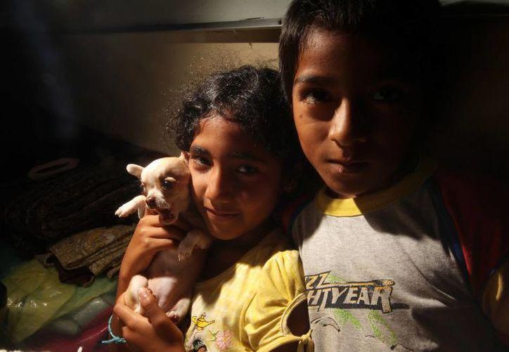 Los cientos de niños del albergue La Gran Familia, de Zamora, Michoacán, poco a poco son reinstalados en otros sitios, mientras que 'Mamá Rosa' y sus colaboradores  enfrentan a la justicia. (Notimex/Foto de contexto)