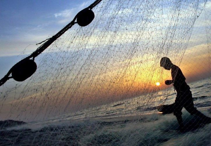 Guatemala es un referente mundial para la pesca del pez vela, que generó 25 millones de dólares en 2013 en divisas de turistas que visitaron el país por dicha actividad. (EFE/Archivo)