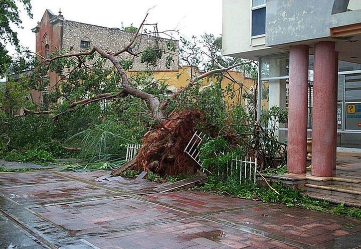 En la Península, los ciclones son factor de riesgo, ya  que la gran mayoría de empresas no están a aseguradas y desaparecen después del desastre (Archivo/SIPSE).