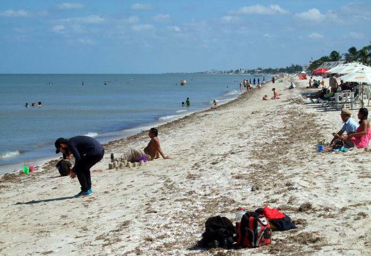 El Día de Muertos y por consiguiente el día de asueto, revive la actividad en el litoral yucateco. (Milenio Novedades)