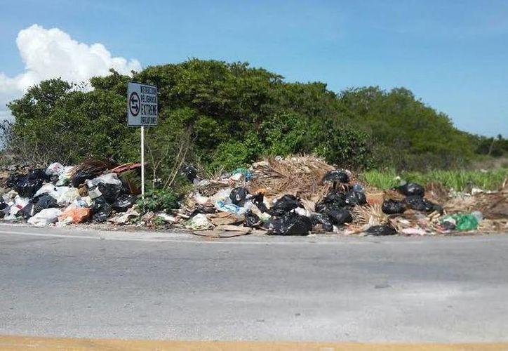 En Progreso en una jornada normal se acumulan 40 toneladas de basura, pero en un solo día de fin de semana llegan a ser hasta 300, por lo que urgen a solucionar el problema. (Foto: Oscar González/Milenio Novedades)