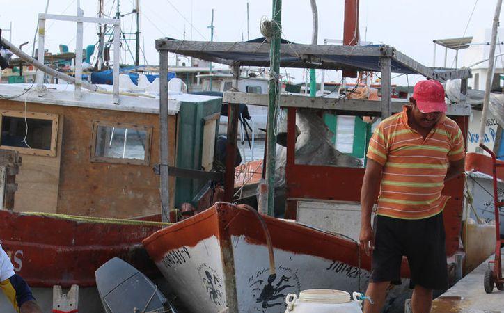 La Marina halló un cadáver flotando en el mar: era de un pescador que se extravió hace unos días. La imagen no corresponde al hecho, es únicamente ilustrativa. (Gerardo Keb/SIPSE-Archivo)