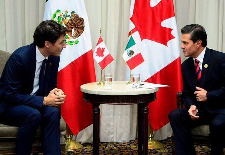 La comunicación entre líderes de Canadá y México es estrecha. (foto: El Economista)