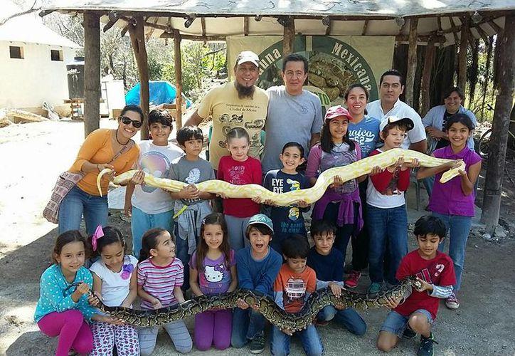 En el lugar albergan reptiles, desde cocodrilos y hasta serpientes. (Facebook)