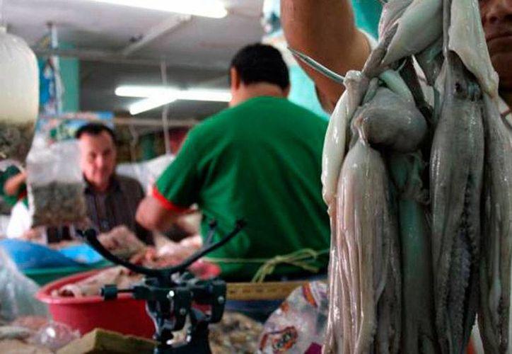 El pulpo será uno de los 'productos yucatecos estrella' en la Expo Milán, en septiembre próximo. (Milenio Novedades)