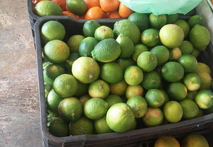 En tan solo un par de días el precio del limón pasó de 15 a 25 pesos en Chetumal. (Foto: Juan Rofríguez)