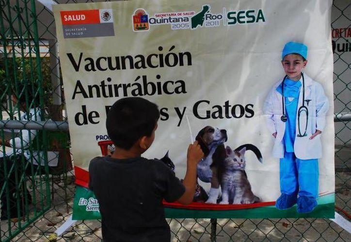 Las dosis se aplicarán hasta el domingo 27 de septiembre en los diferentes módulos de vacunación en Cancún. (Archivo/SIPSE)