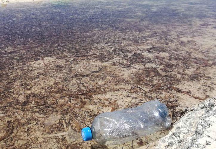 La contaminación del mar es el resultado de las acciones del hombre. (Paola Chiomante/SIPSE)
